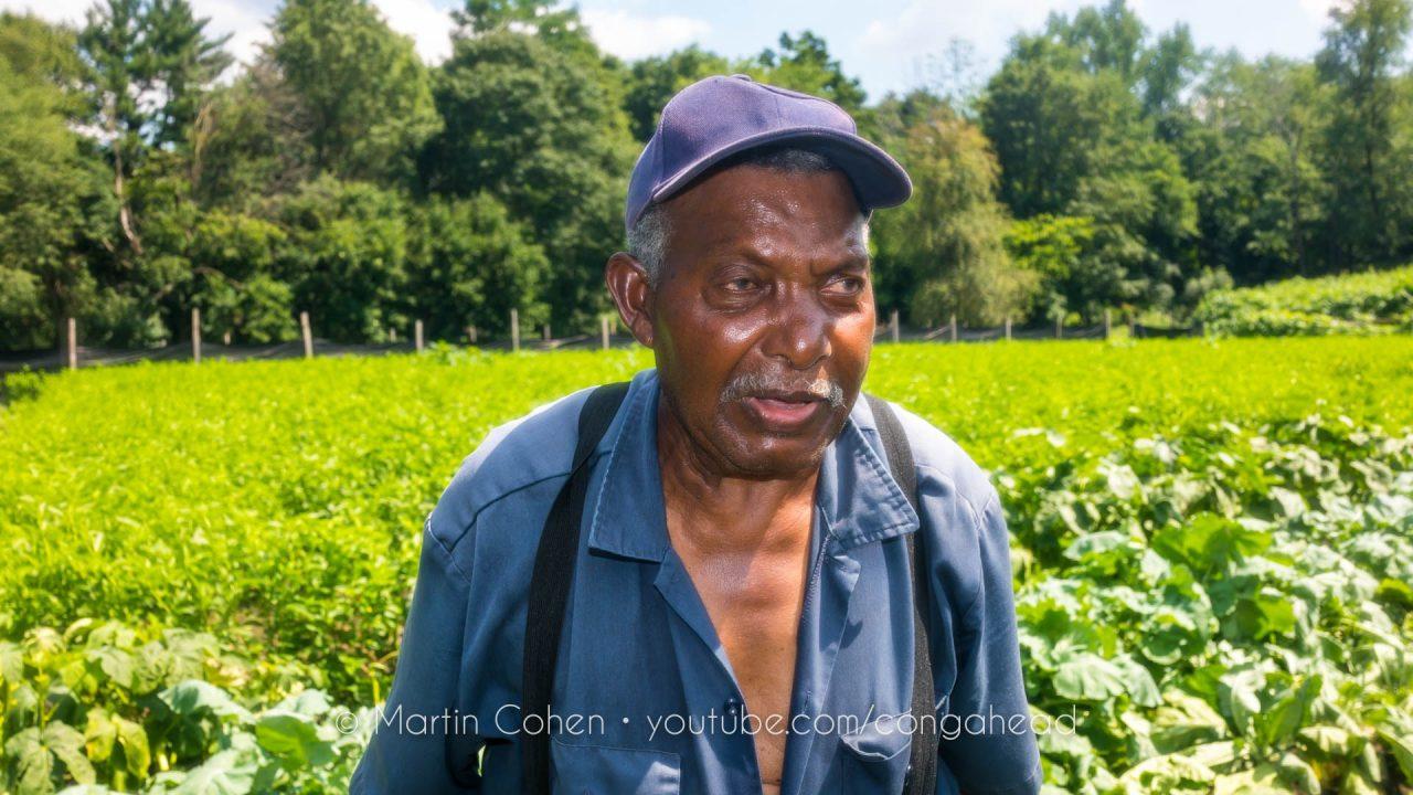 Jimmy The Farmer