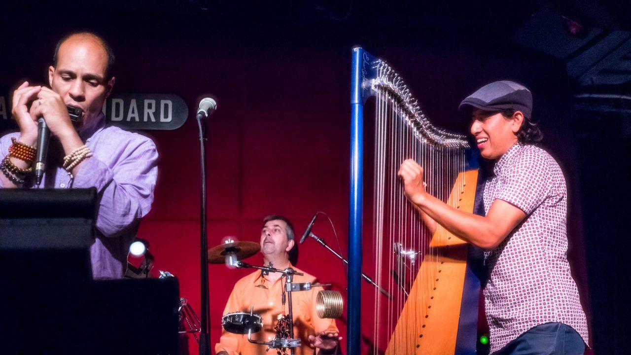 Edmar Castañeda at Jazz Standard