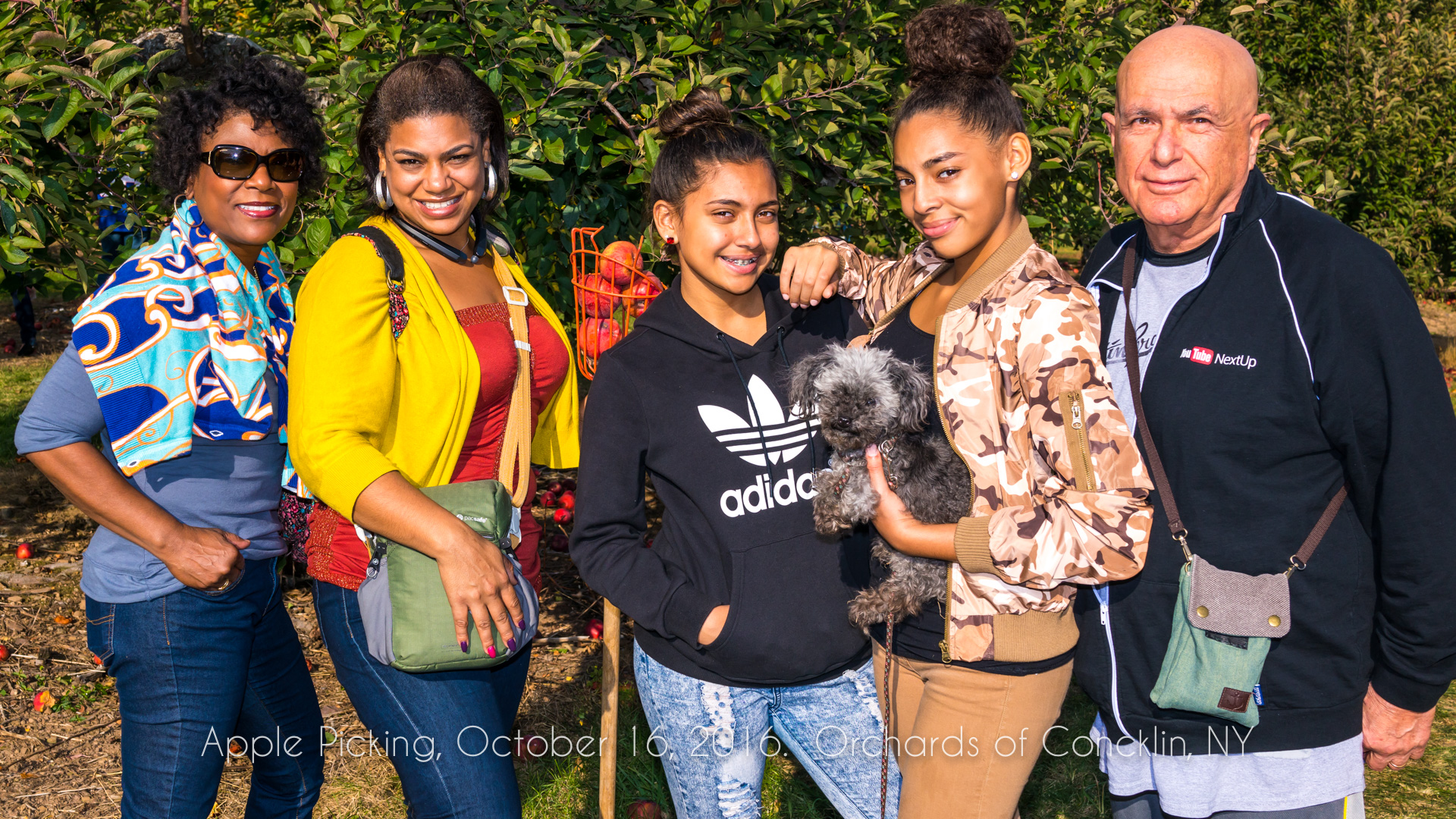 Apple Picking, September 16, 2016, Orchards of Concklin, NY